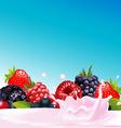 forest fruit with yogurt splash vector image