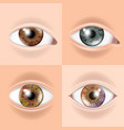 human eye set vision concept medical eye vector image vector image