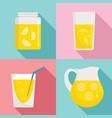 lemonade icon set flat style vector image