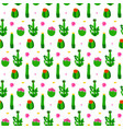 pattern with cactus vector image vector image