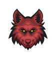 red evil wolf vector image vector image