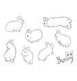 set of drawing small bunny vector image