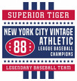 superior tiger new york vintage vector image vector image