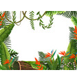 bird of paradise flower border vector image