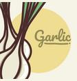 garlic vegetable cartoon vector image