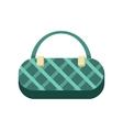 GreenLadies Handbag vector image vector image