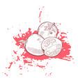 hand drawn sketch tomato on grunge ink splash vector image