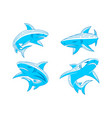shark animal logo design outline set template vector image vector image