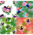 tropical toucan pattern set cartoon style vector image