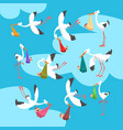 white storks delivering newborn babies set flying vector image