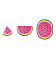 isolated watermelon slices fresh fruits cut in vector image vector image