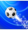 Sport Football Icon vector image vector image