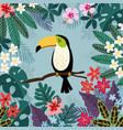 summer tropical background toucan bird with palm vector image vector image