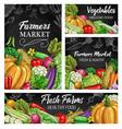 vegetable sketches on blackboard fresh farm food vector image vector image