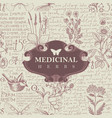 banner for medicinal herbs in retro style vector image