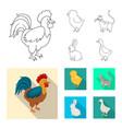 design of breeding and kitchen symbol set vector image