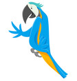 funny macaw bird cartoon animal character vector image