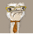 funny Ostrich Bird hipster vector image vector image