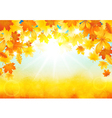 Sunny autumn day vector image vector image