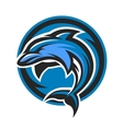 Dolphin sport logo emblem vector image
