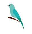 canary bird on branch vector image vector image