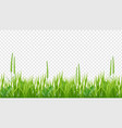 green grass border realistic field or meadow vector image vector image