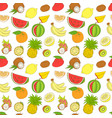 outline hand drawn seamless colorfull fruit vector image
