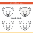 Polar bear Set isolated face heads bear in color vector image