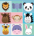 cute group head animals characters vector image