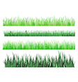 grass and field elements vector image