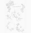 line drawing floral wreaths frames branches vector image vector image