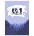 winter sale words on the beautiful chrismas flat vector image