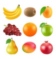 different of fruits realistic vector image vector image
