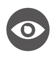 eye view isolated icon vector image