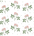 Ginseng seamless pattern vector image