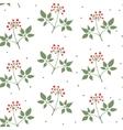 Ginseng seamless pattern vector image vector image