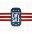 Independence Day Sale special Tag vector image vector image