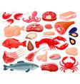 meat food cartoon seafood and butcher shop food vector image