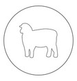 sheep silhouette black icon in circle isolated vector image
