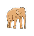 elephant isolated on the white vector image vector image
