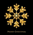 Golden Merry Christmas Sparkle Snowflakes vector image