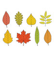 hand drawn colorful autumn leaves set vector image