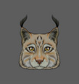 head of lynx portrait of wild serval cat animal vector image