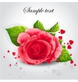 red rose on a gray background vector image vector image