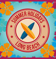 beach landscape with surf boards seal vector image vector image