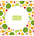 colorful fresh vegetables and fruits banner vector image vector image