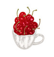 hand drawn cherry in mug fruit vector image vector image