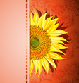 Red Sunflower Background vector image vector image