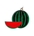 Sign flat watermelon 2808 vector image vector image