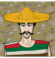 mexican over pattern vector image